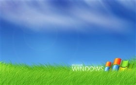 Microsoft Windows-Logo in das Gras HD Hintergrundbilder
