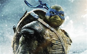 Teenage Mutant Ninja Turtles, Leo HD Hintergrundbilder