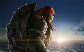 Teenage Mutant Ninja Turtles, Raph HD Hintergrundbilder