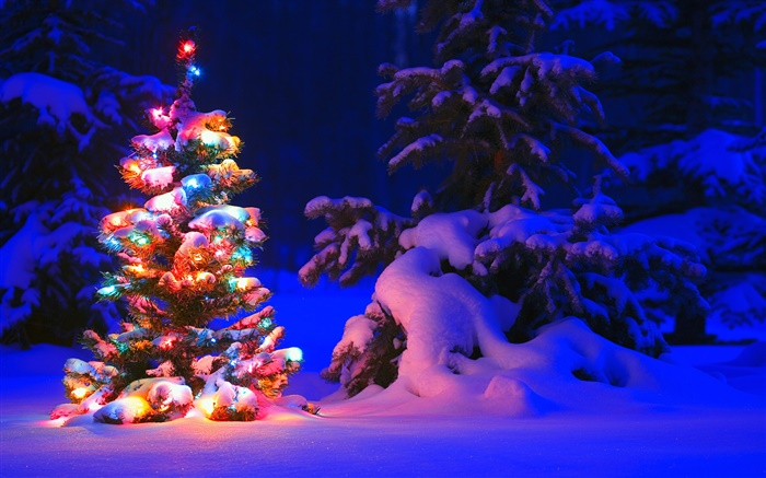 Weihnachten Hd Bilder.Schnee Leuchten Baum Winter Nacht Weihnachten Hd