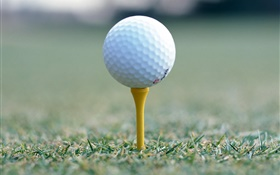 Golfball  close-up HD Hintergrundbilder