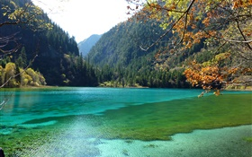 China, Jiuzhaigou Nationalpark , See, Berge, Bäume HD Hintergrundbilder